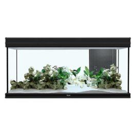 Aquarium kopen aquariumhuis Friesland