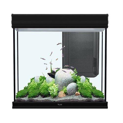 verkoop aquarium