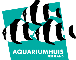 aquariumwinkel aquariumhuis Friesland